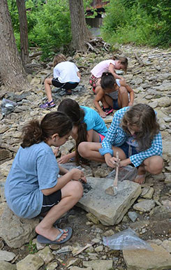 Looking for inspiration in nature during Summer Clay Camp.